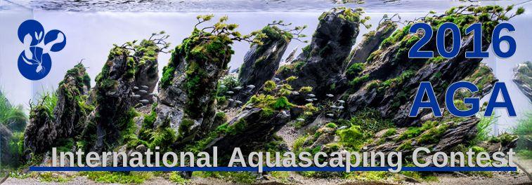 2016 Aga Aquascaping Contest